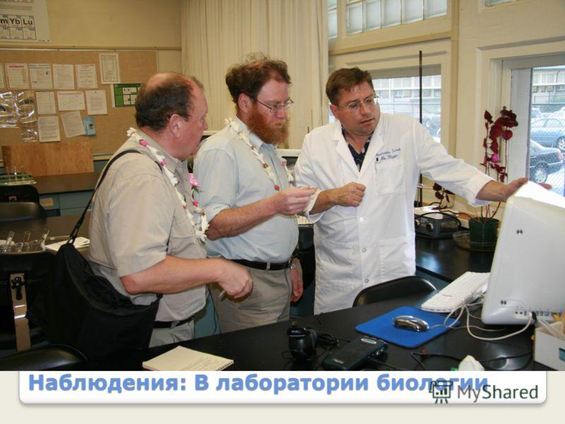 Наблюдения: В лаборатории биологии