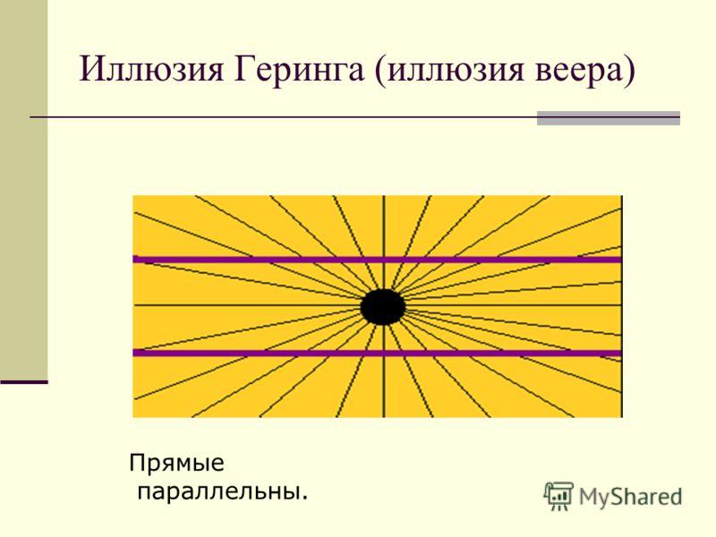Иллюзия Геринга (иллюзия веера) Прямые параллельны.