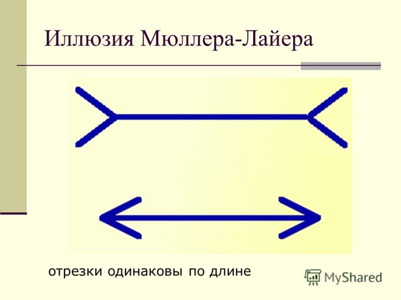 Иллюзия Мюллера-Лайера отрезки одинаковы по длине