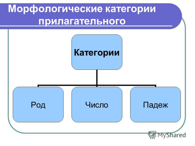 Морфологические категории прилагательного Категории РодЧислоПадеж