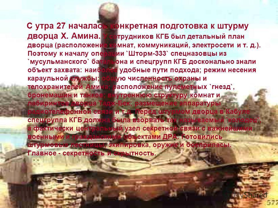 Внешнее кольцо охраны образовывали пункты дислокации батальонов бригады охраны (трех мотопехотных и танкового). Они располагались вокруг Тадж-Бека на небольшом удалении. На одной из господствующих высот были закопаны два танка Т-54, которые могли бес