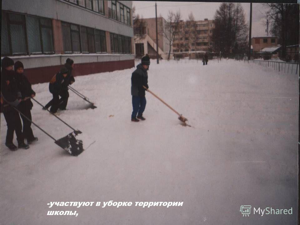-участвуют в уборке территории школы,