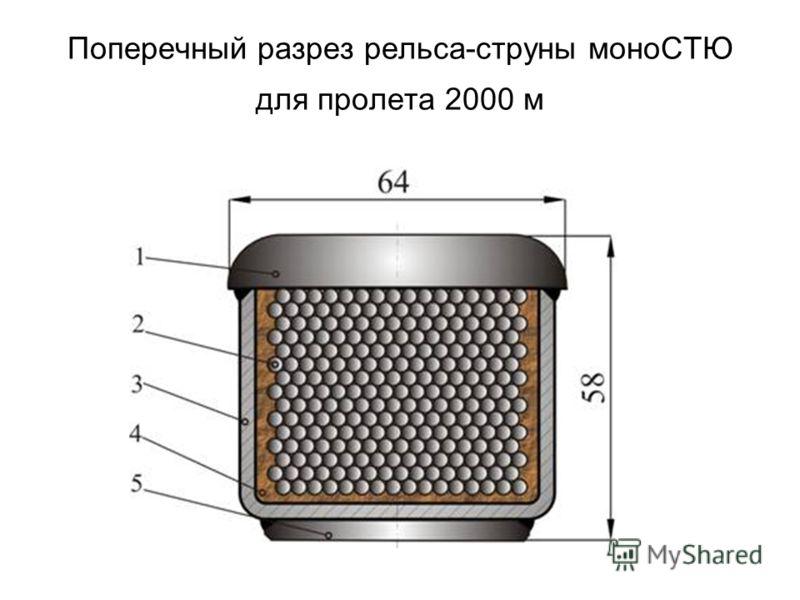 Поперечный разрез рельса-струны моноСТЮ для пролета 2000 м