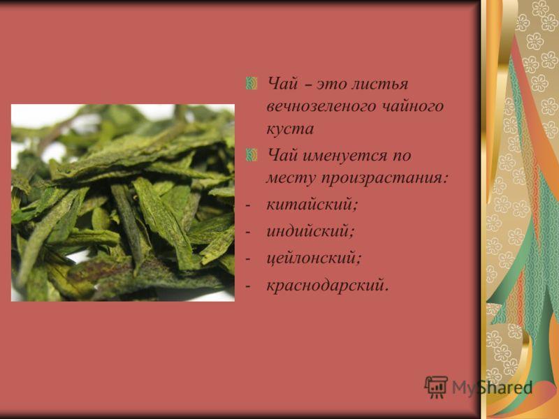 Чай – это листья вечнозеленого чайного куста Чай именуется по месту произрастания : - китайский ; - индийский ; - цейлонский ; - краснодарский.
