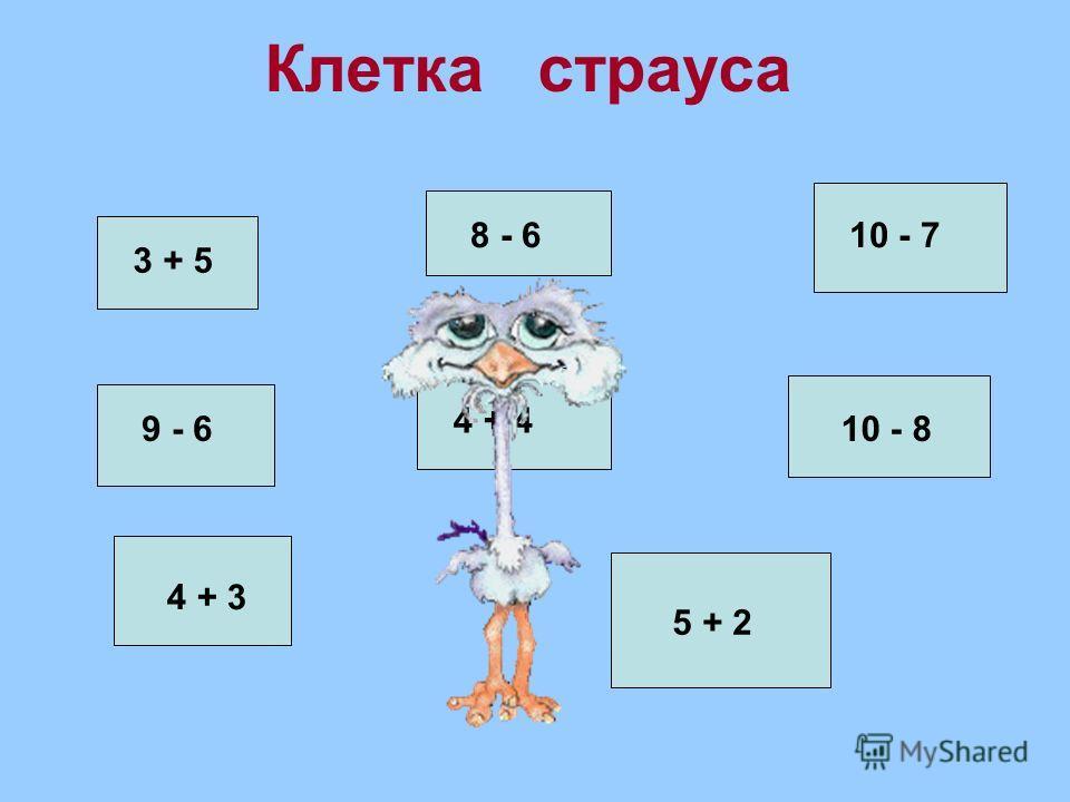 Клетка страуса 3 + 5 8 - 610 - 7 9 - 6 4 + 4 10 - 8 4 + 3 5 + 2