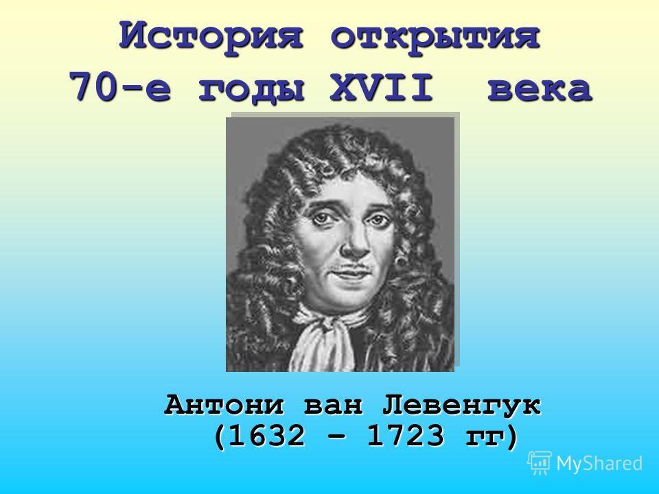 История открытия 70-е годы XVII века Антони ван Левенгук (1632 – 1723 гг)