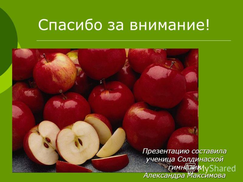 Спасибо за внимание! Презентацию составила ученица Солдинаской гимназии Александра Максимова