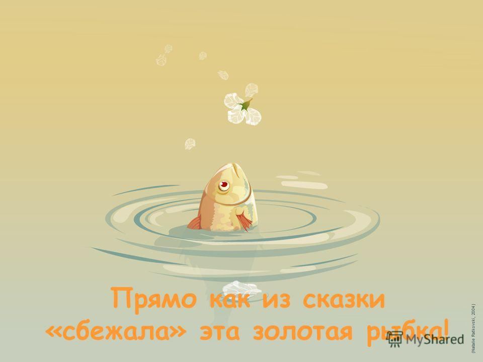 Прямо как из сказки «сбежала» эта золотая рыбка!