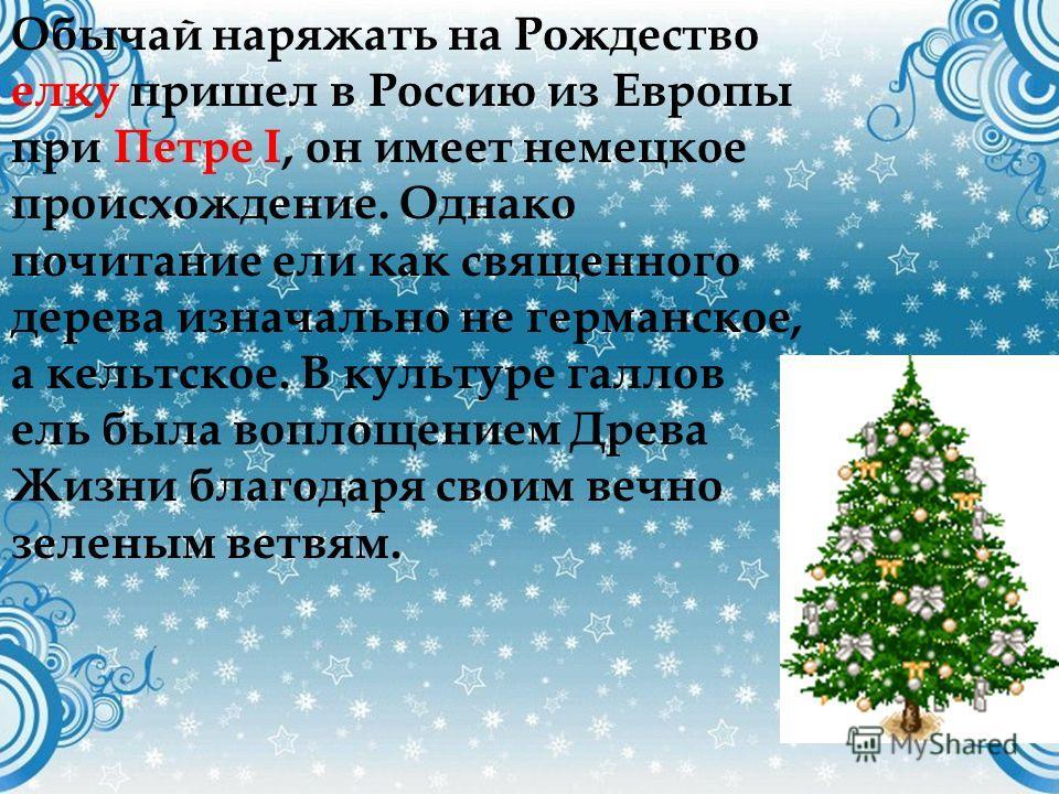 Обычай наряжать на Рождество елку пришел в Россию из Европы при Петре I, он имеет немецкое происхождение. Однако почитание ели как священного дерева изначально не германское, а кельтское. В культуре галлов ель была воплощением Древа Жизни благодаря с