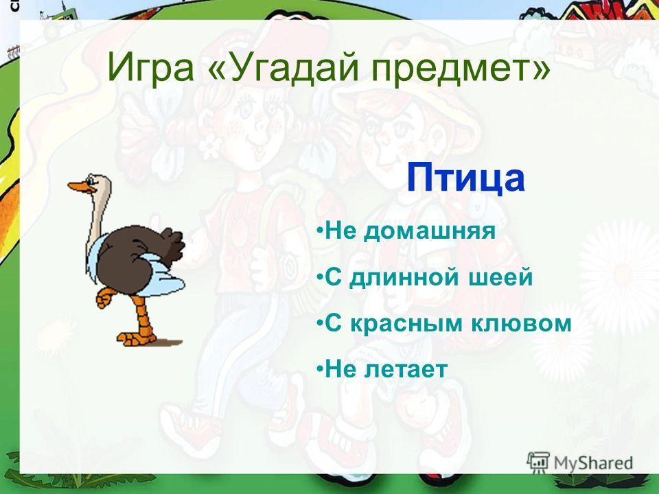 Игра «Угадай предмет» Не домашняя С длинной шеей С красным клювом Не летает Птица