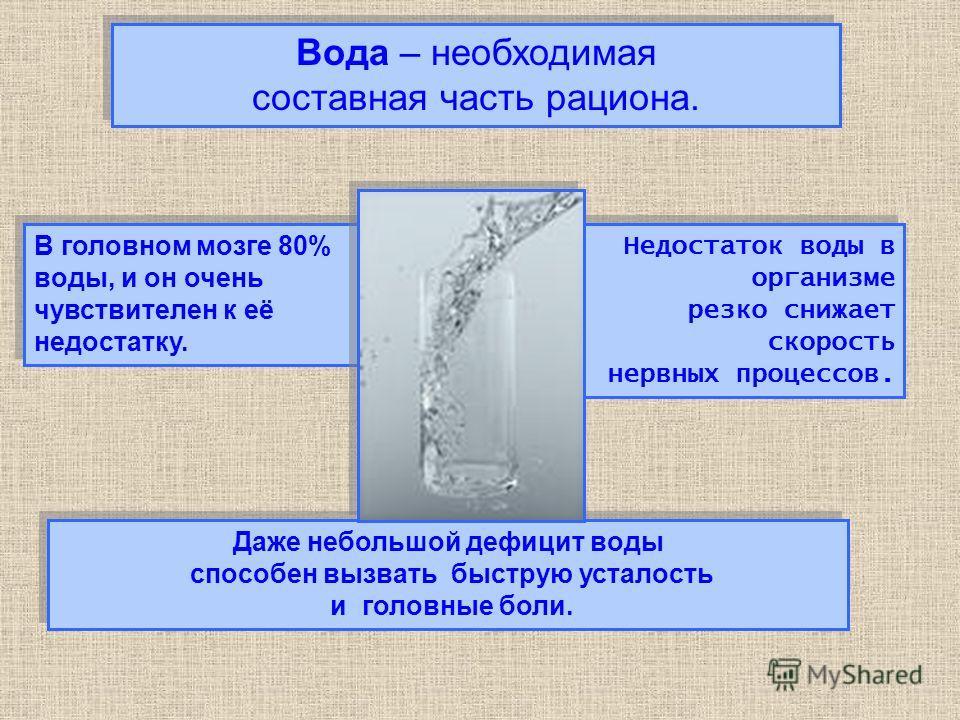Вода – необходимая составная часть рациона. Вода – необходимая составная часть рациона. Даже небольшой дефицит воды способен вызвать быструю усталость и головные боли. Даже небольшой дефицит воды способен вызвать быструю усталость и головные боли. В