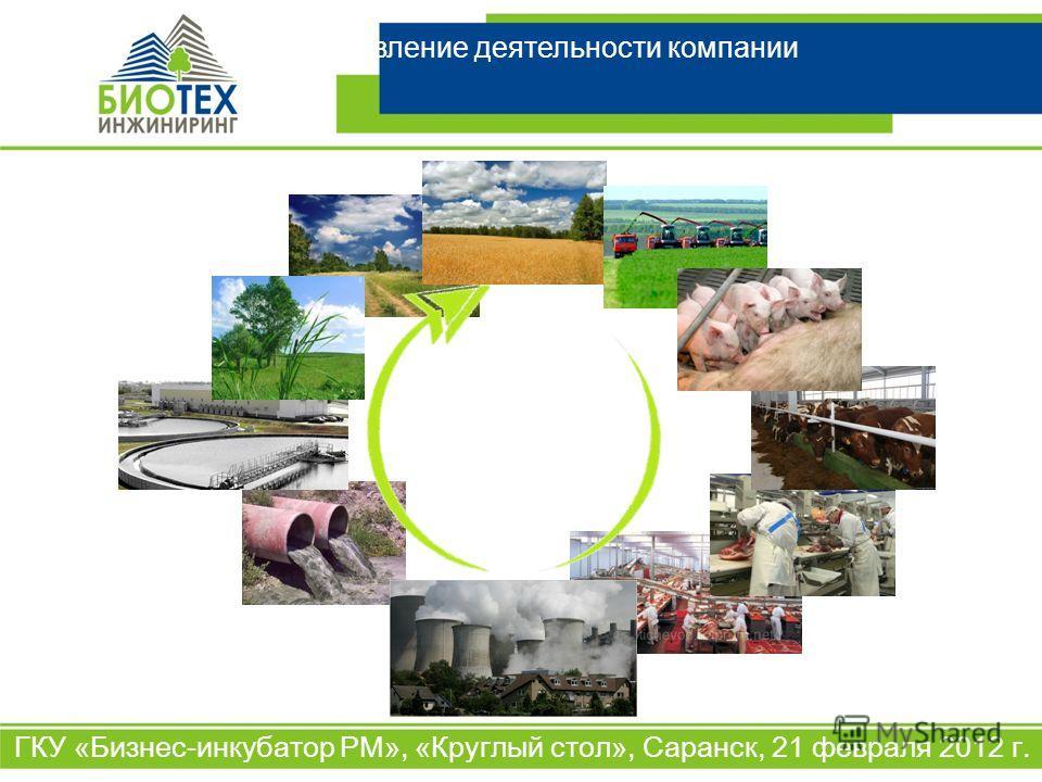 Направление деятельности компании ГКУ «Бизнес-инкубатор РМ», «Круглый стол», Саранск, 21 февраля 2012 г.