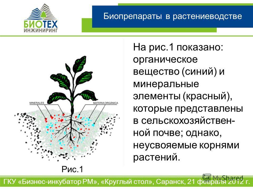 Биопрепараты в растениеводстве ГКУ «Бизнес-инкубатор РМ», «Круглый стол», Саранск, 21 февраля 2012 г. На рис.1 показано: органическое вещество (синий) и минеральные элементы (красный), которые представлены в сельскохозяйствен- ной почве; однако, неус
