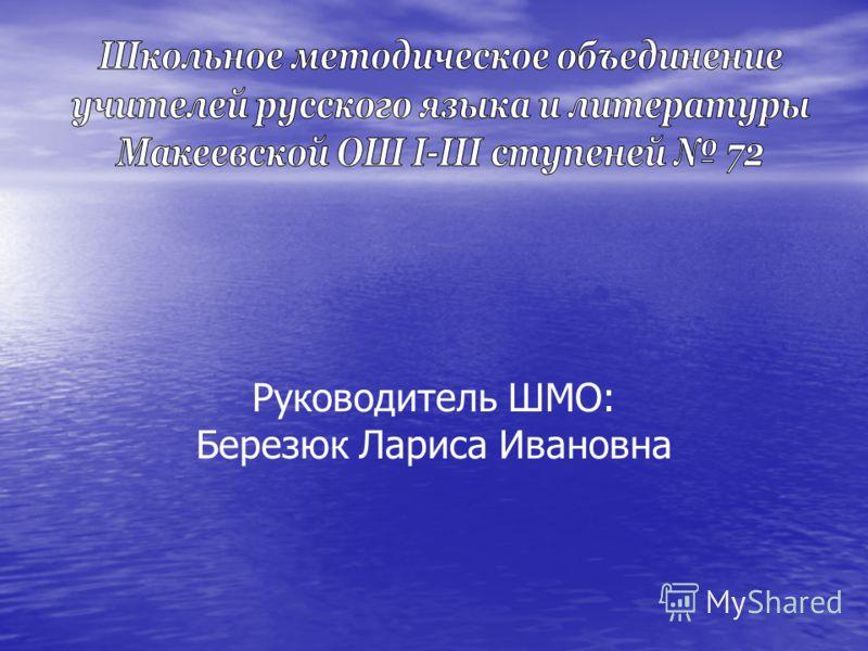 Руководитель ШМО: Березюк Лариса Ивановна