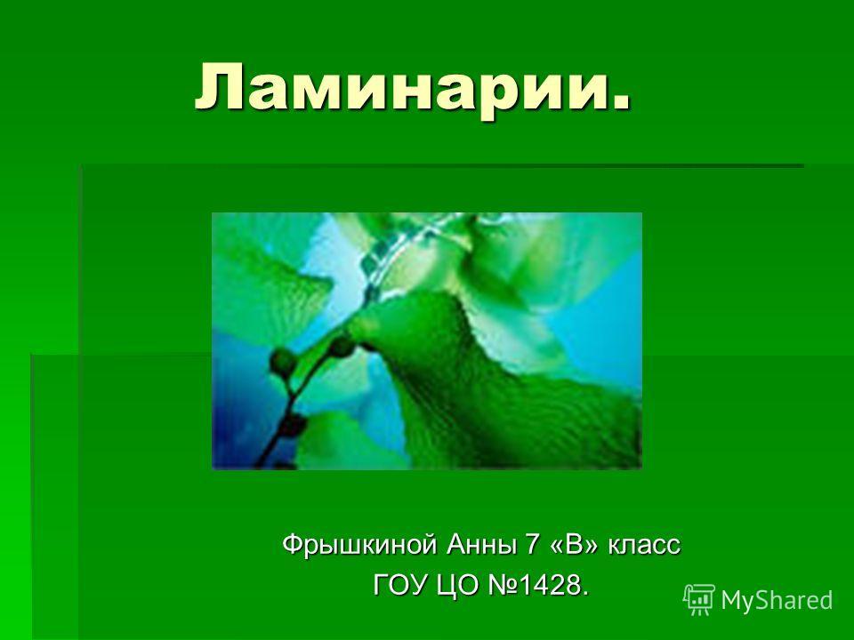 Ламинарии. Фрышкиной Анны 7 «В» класс ГОУ ЦО 1428.