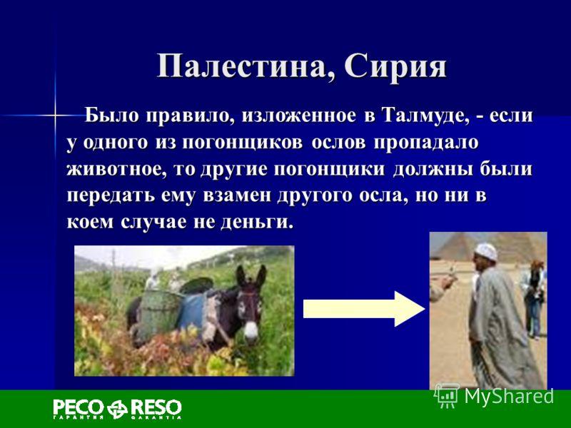 Палестина, Сирия Было правило, изложенное в Талмуде, - если у одного из погонщиков ослов пропадало животное, то другие погонщики должны были передать ему взамен другого осла, но ни в коем случае не деньги. Было правило, изложенное в Талмуде, - если у