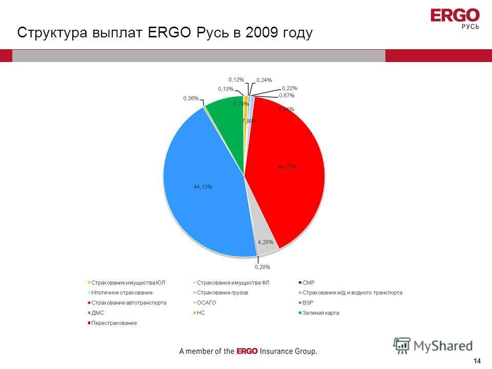 14 Структура выплат ERGO Русь в 2009 году