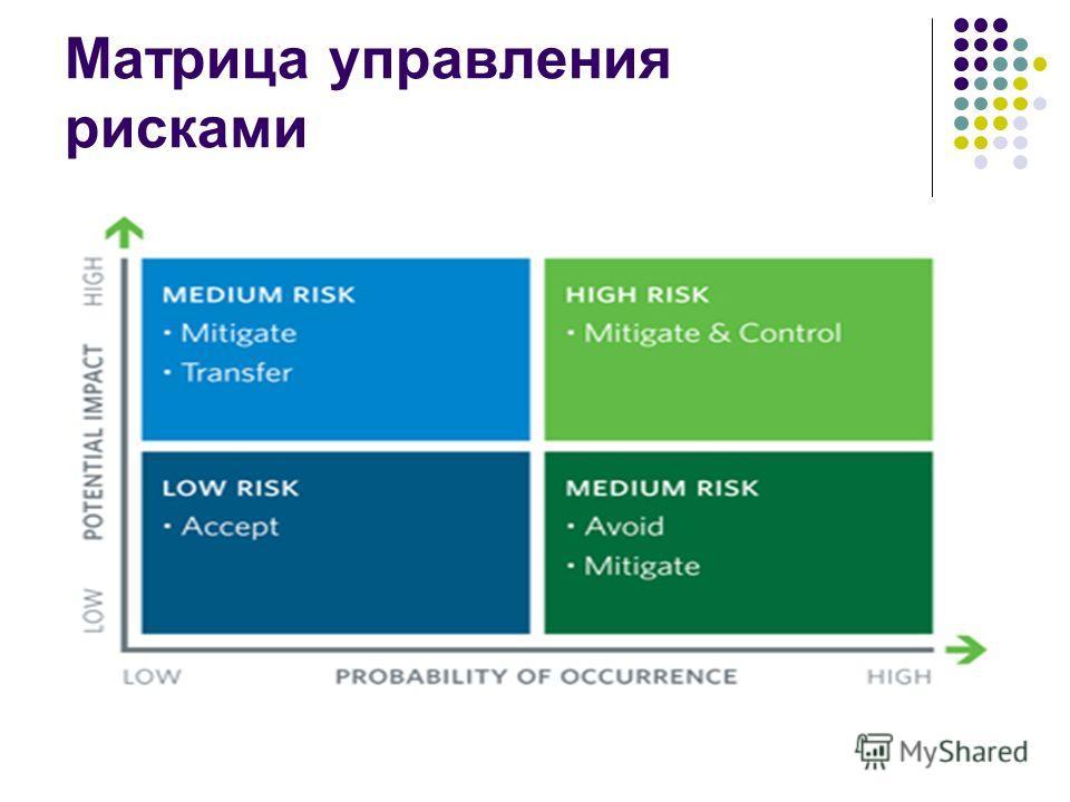 Матрица управления рисками
