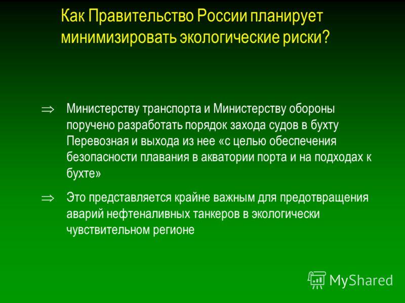 Как Правительство России планирует минимизировать экологические риски? Министерству транспорта и Министерству обороны поручено разработать порядок захода судов в бухту Перевозная и выхода из нее «с целью обеспечения безопасности плавания в акватории
