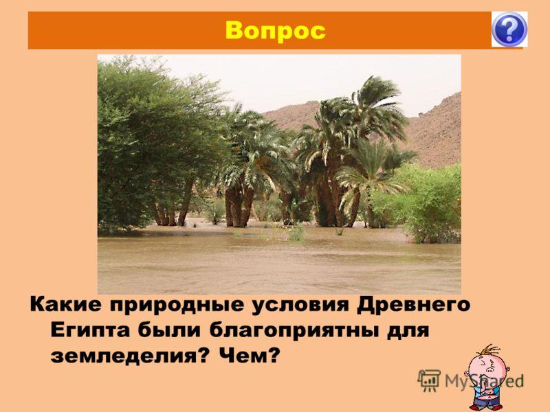 Вопрос Какие природные условия Древнего Египта были благоприятны для земледелия? Чем?