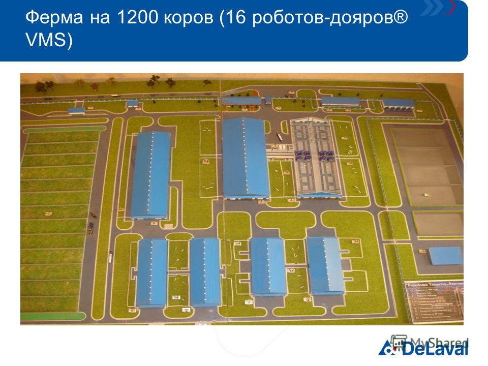 Ферма на 1200 коров (16 роботов-дояров® VMS)