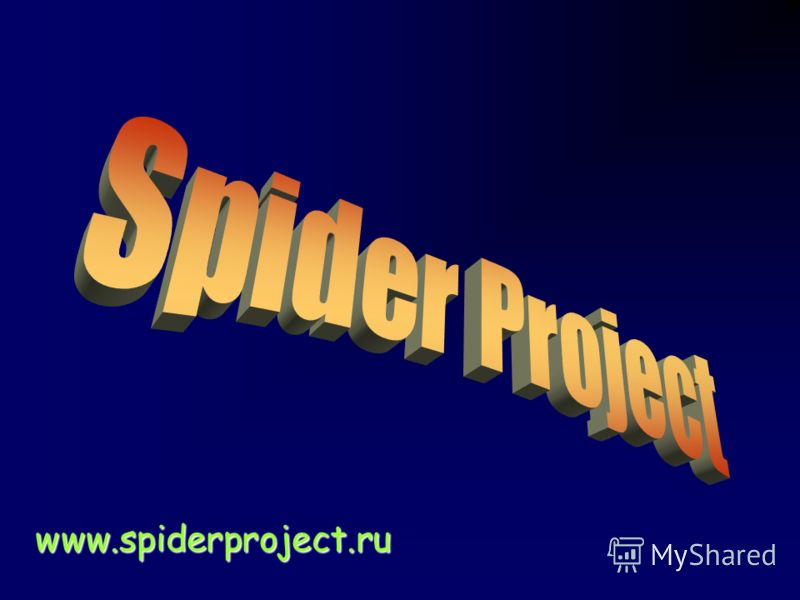 www.spiderproject.ru