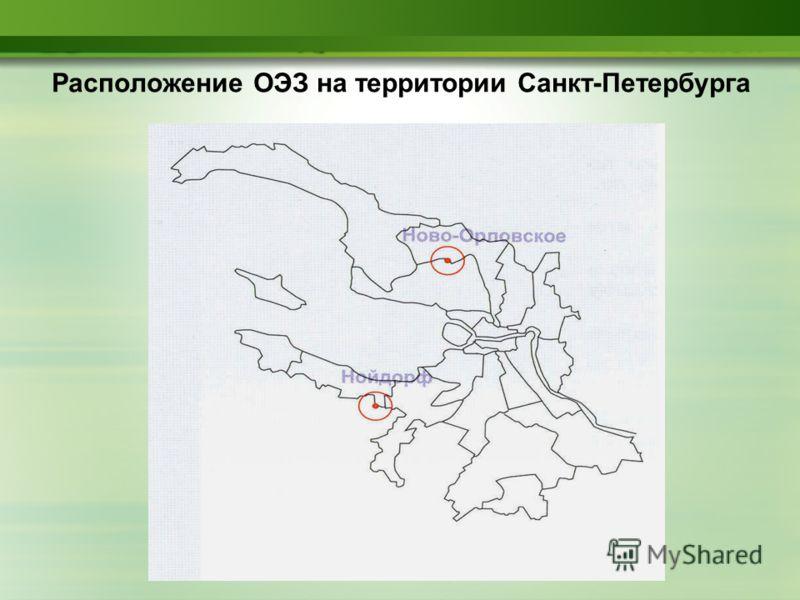 Расположение ОЭЗ на территории Санкт-Петербурга