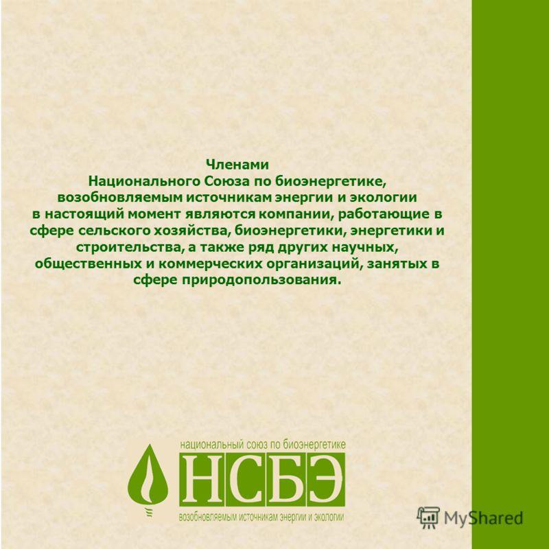 Членами Национального Союза по биоэнергетике, возобновляемым источникам энергии и экологии в настоящий момент являются компании, работающие в сфере сельского хозяйства, биоэнергетики, энергетики и строительства, а также ряд других научных, общественн