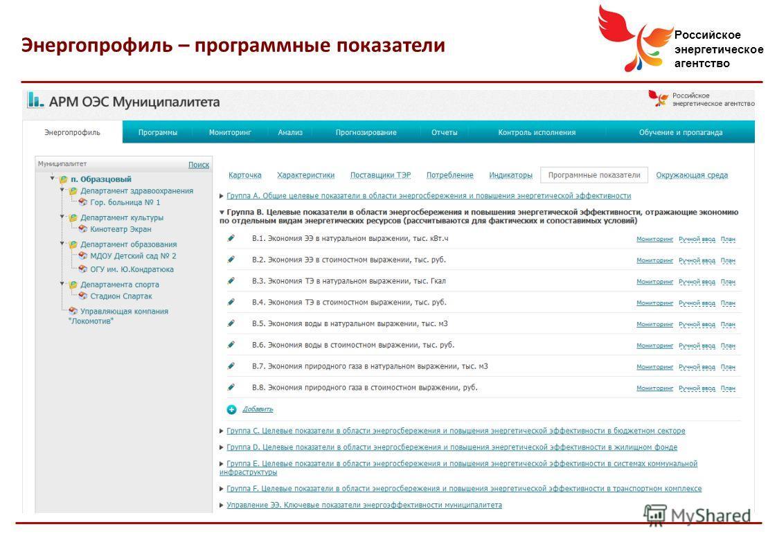 Российское энергетическое агентство Энергопрофиль – программные показатели