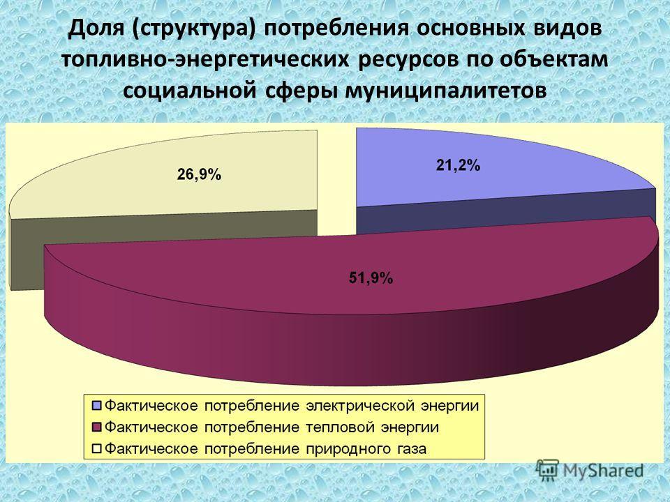 Доля (структура) потребления основных видов топливно-энергетических ресурсов по объектам социальной сферы муниципалитетов