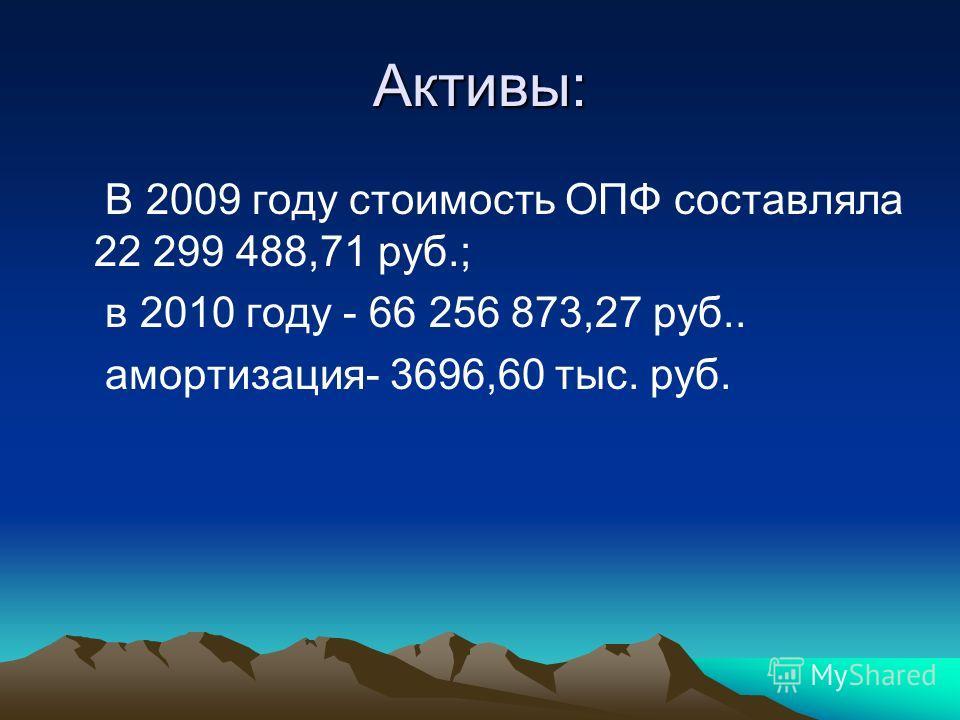 Активы: В 2009 году стоимость ОПФ составляла 22 299 488,71 руб.; в 2010 году - 66 256 873,27 руб.. амортизация- 3696,60 тыс. руб.