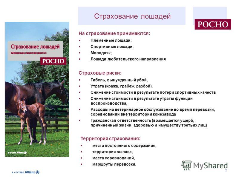 2 Страхование лошадей Страховые риски: Гибель, вынужденный убой, Утрата (кража, грабеж, разбой), Снижение стоимости в результате потери спортивных качеств Снижение стоимости в результате утраты функции воспроизводства, Расходы на ветеринарное обслужи