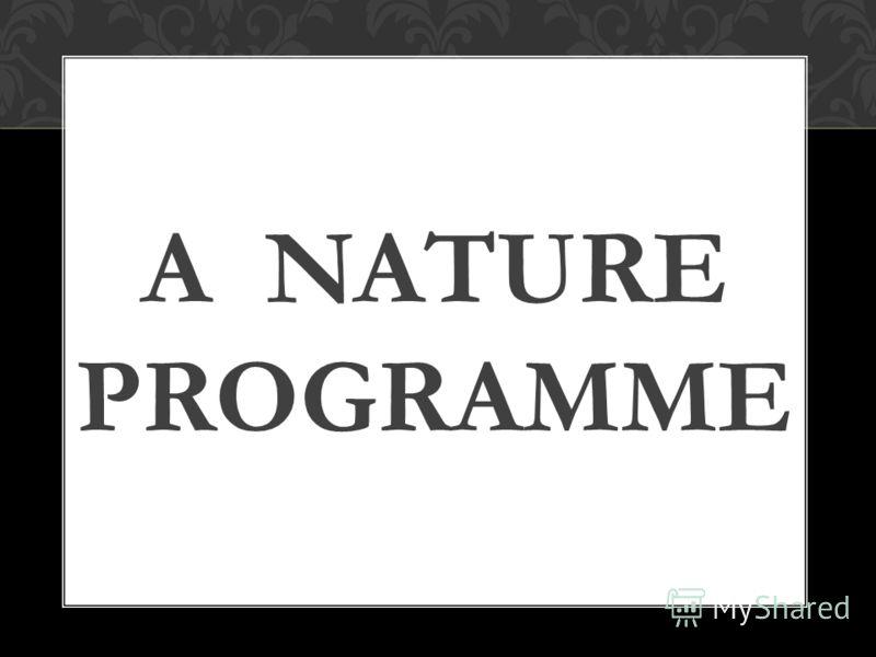 A NATURE PROGRAMME