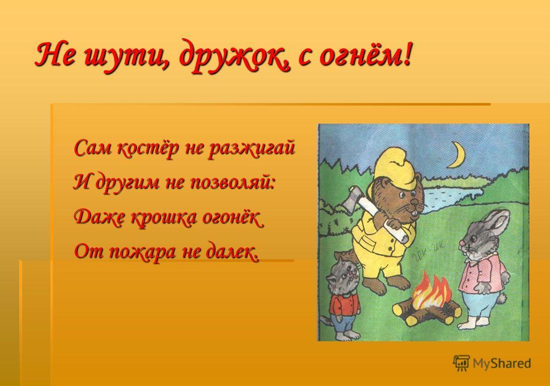 Не шути, дружок, с огнём! Сам костёр не разжигай И другим не позволяй: Даже крошка огонёк От пожара не далек.