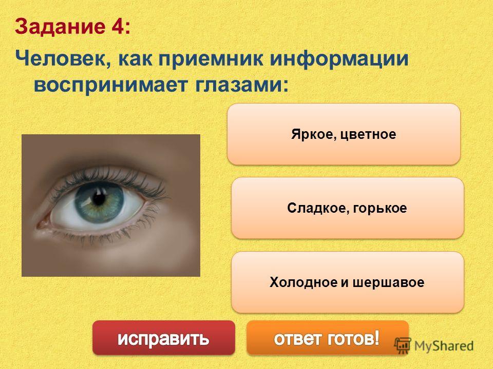 Сладкое, горькое Задание 4: Человек, как приемник информации воспринимает глазами: Яркое, цветное Холодное и шершавое