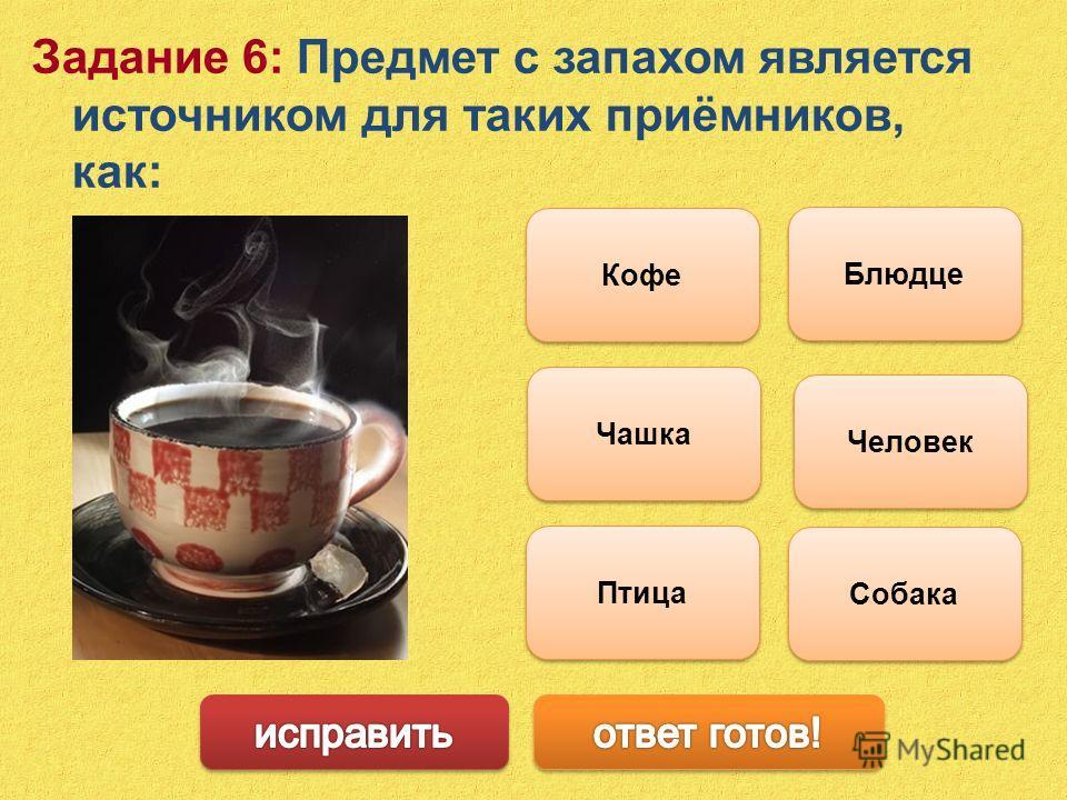 Задание 6: Предмет с запахом является источником для таких приёмников, как: Человек Собака Птица Кофе Блюдце Чашка