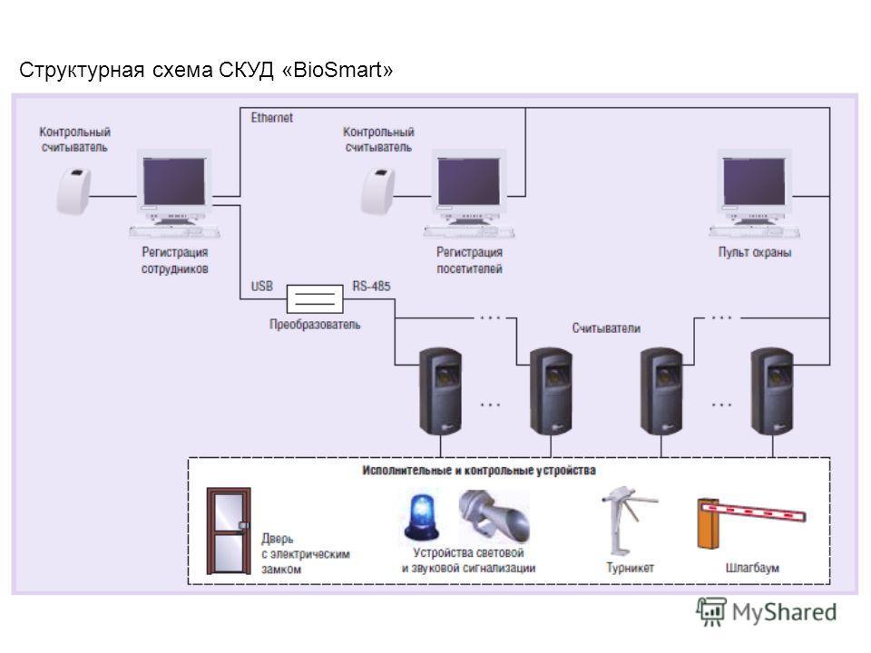Структурная схема СКУД «BioSmart»