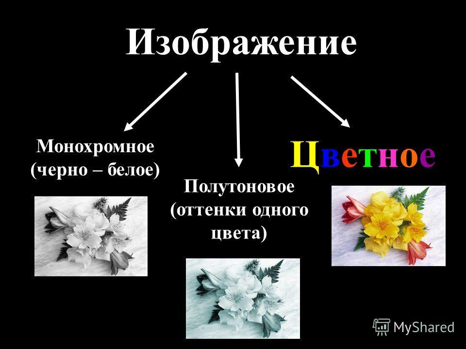 Изображение Монохромное (черно – белое) Полутоновое (оттенки одного цвета) ЦветноеЦветное