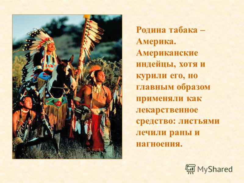Родина табака – Америка. Американские индейцы, хотя и курили его, но главным образом применяли как лекарственное средство: листьями лечили раны и нагноения.