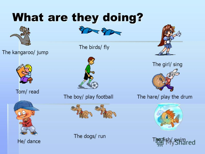 What are they doing? The kangaroo/ jump The birds/ fly The girl/ sing Tom/ read The boy/ play football He/ dance The dogs/ run The hare/ play the drum The fish/ swim
