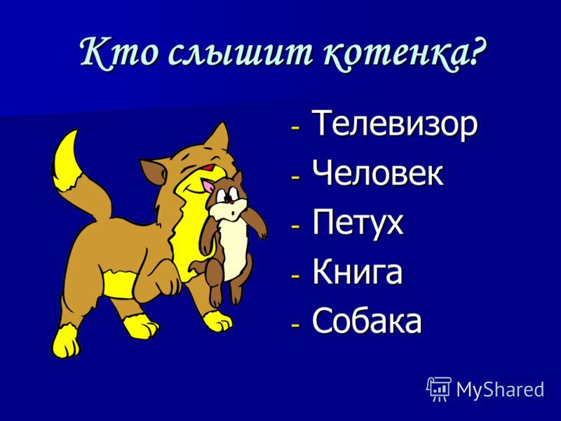 Кто слышит котенка? - Телевизор - Человек - Петух - Книга - Собака