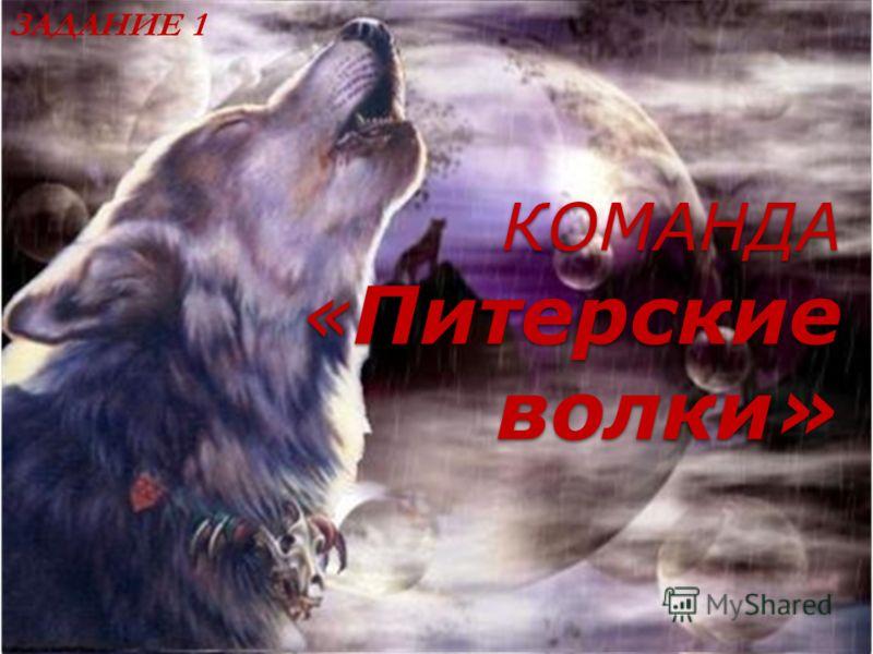 КОМАНДА «Питерские волки» ЗАДАНИЕ 1