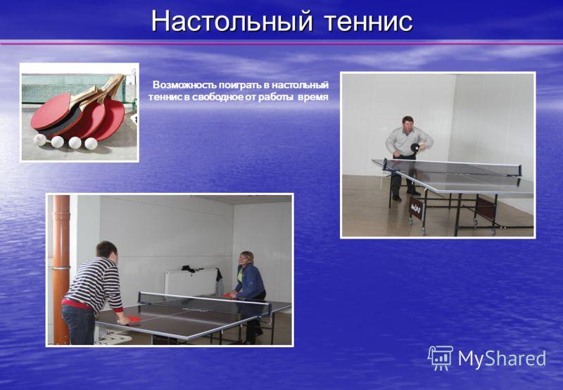 Настольный теннис Возможность поиграть в настольный теннис в свободное от работы время