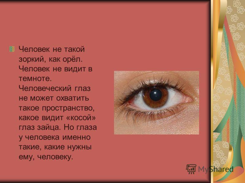 Человек не такой зоркий, как орёл. Человек не видит в темноте. Человеческий глаз не может охватить такое пространство, какое видит «косой» глаз зайца. Но глаза у человека именно такие, какие нужны ему, человеку.