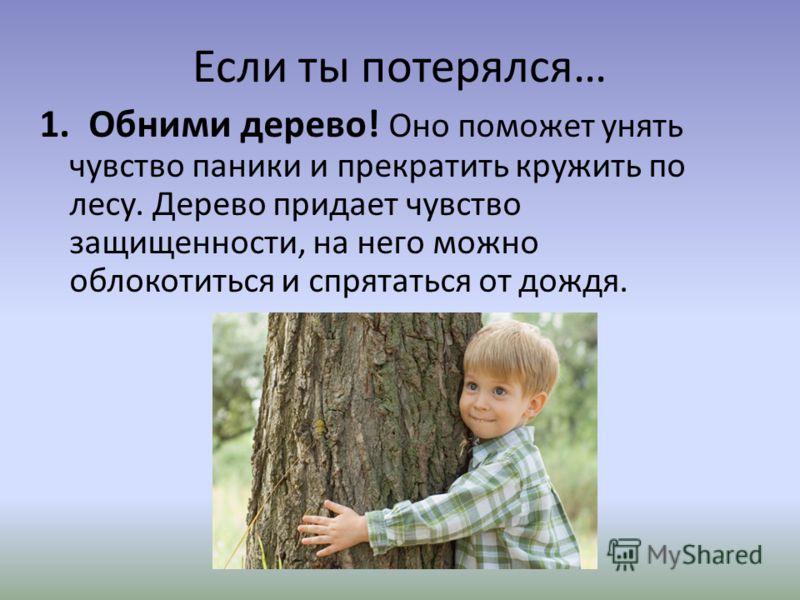1. Обними дерево! Оно поможет унять чувство паники и прекратить кружить по лесу. Дерево придает чувство защищенности, на него можно облокотиться и спрятаться от дождя.