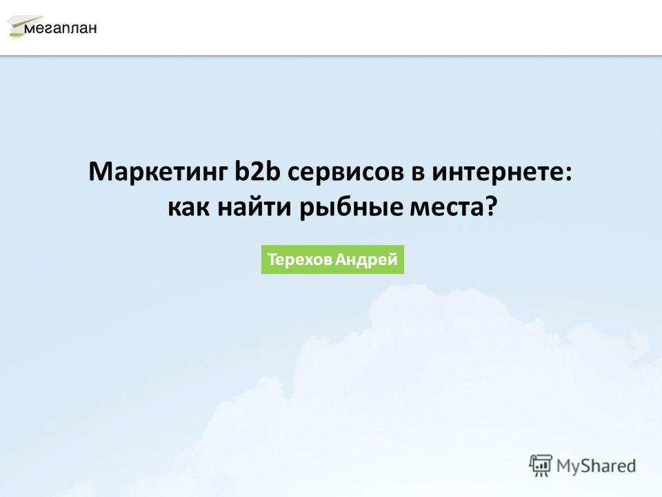 Маркетинг b2b сервисов в интернете: как найти рыбные места? Терехов Андрей