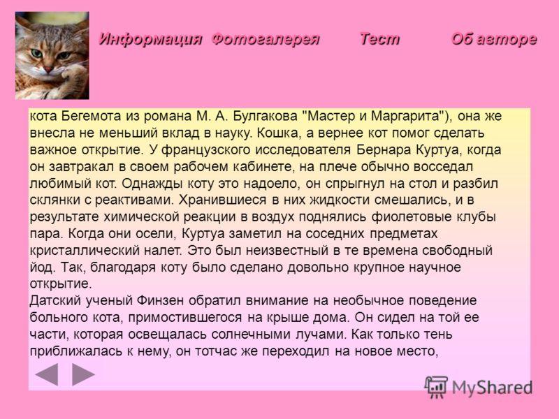 Информация Фотогалерея Тест кота Бегемота из романа М. А. Булгакова