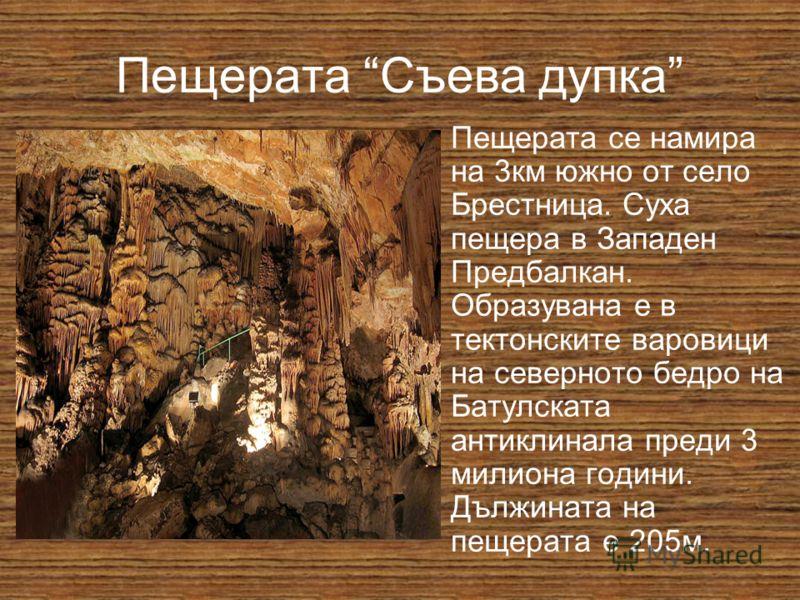 Пещерата Съева дупка Пещерата се намира на 3км южно от село Брестница. Суха пещера в Западен Предбалкан. Образувана е в тектонските варовици на северното бедро на Батулската антиклинала преди 3 милиона години. Дължината на пещерата е 205м.