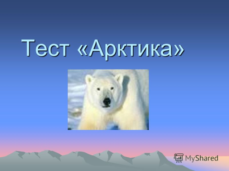 Тест «Арктика» Тест «Арктика»