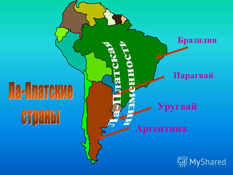Бразилия Парагвай Уругвай Аргентина
